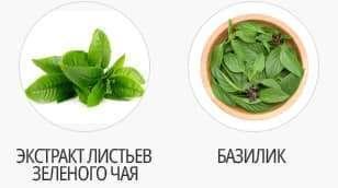 чай и базилик
